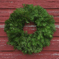 Undecorated Balsam Wreath - 18