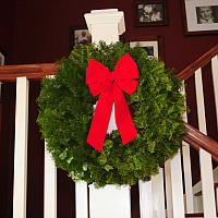 Budget Balsam Fir Wreath - 24