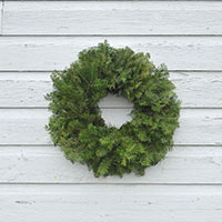 Undecorated Balsam Wreath - 24