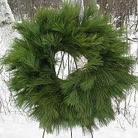 Elite Pine Wreath